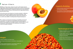 Apricot-onepager-inner